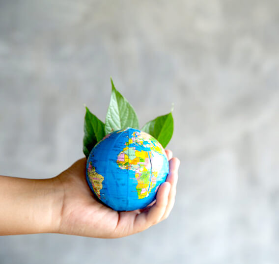 Make every day World Environment Day